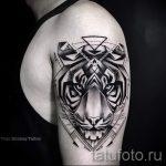 Tiger dans un tatouage triangle - Photo exemplaire d'un tatouage frais sur 14072016 2