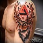 cerfs de tatouage dans le triangle - Photo exemple d'un tatouage frais sur 14072016 2