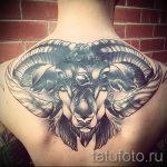Widder tattoo - Fotos des fertigen Tätowierung auf 02082016 2049 tatufoto.ru