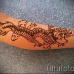 mehendi Drachen auf dem Arm - eine temporäre Henna-Tattoo Foto 1072 tatufoto.ru