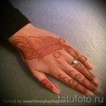 mehendi auf einer Hand Vogelfeder - Foto temporäre Henna-Tattoo 1052 tatufoto.ru