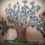 тату на шраме от аппендицита - фото пример готовой татуировки 01092016 17032 tatufoto.ru