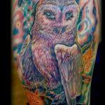 Eule Tattoo-Raum - ein Foto des fertigen Tätowierung 1010 tatufoto.ru