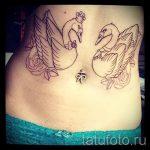 tattoo-zwei-schwane-foto-ein-beispiel-fur-die-fertigen-tatowierung-1023-tatufoto-ru