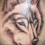 einfache Tattoo Wolf - ein Foto des fertigen Tätowierung 02092016 1026 tatufoto.ru