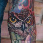 owl espace de tatouage - une photo du tatouage fini 1014 tatufoto.ru