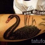 swan-tattoo-on-his-arm-photo-an-example-of-the-finished-tattoo-1018-tatufoto-ru
