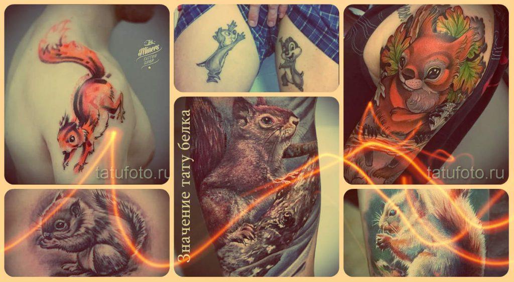 Значение тату белка - информация и примеры готовых тату на фото