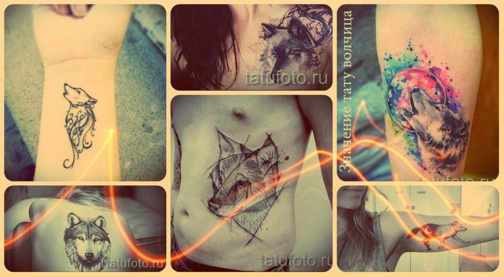 Значение тату волчица - смысл и фото готовых татуировок