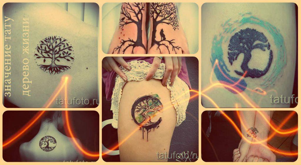Значение тату дерево жизни - информация о рисунке и примеры на фото