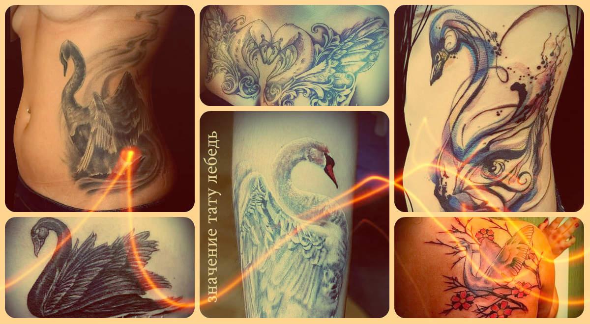 Значение тату лебедь - информация про смысл и примеры готовых тату на фото