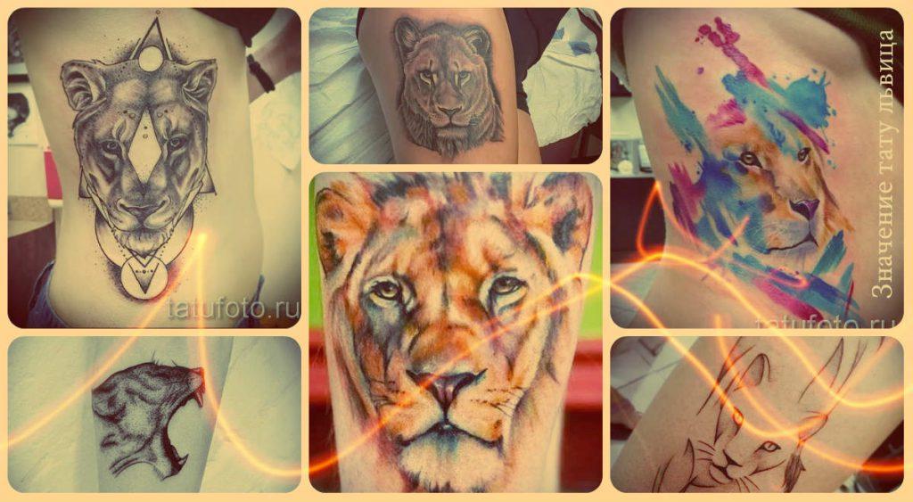 Значение тату львица - информация и фото примеры классных татуировок