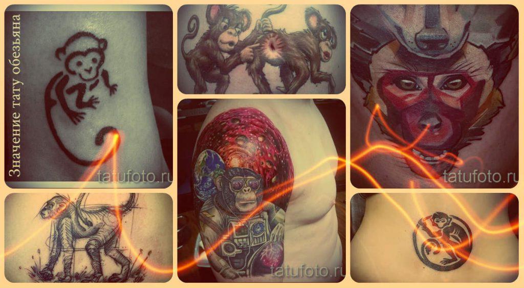 Значение тату обезьяна - все про смысл и фотографии удачных татуировок