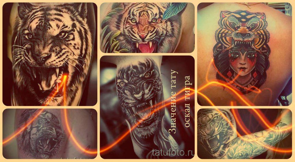 Значение тату оскал тигра - информация про смысл и фото классных татуировок