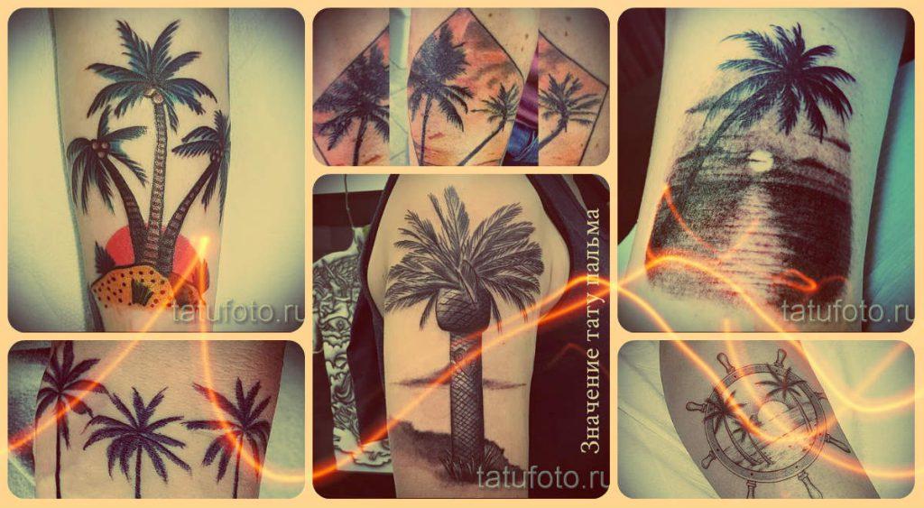 Значение тату пальма - смысл татуировки и фото классных работ