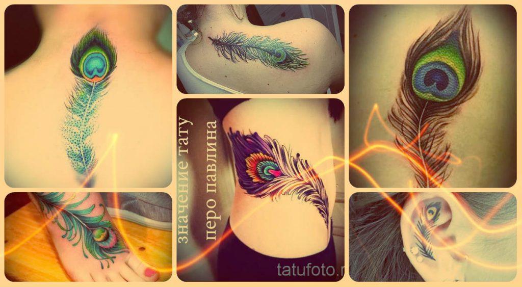 Значение тату перо павлина - информация и фото примеры с татуировками