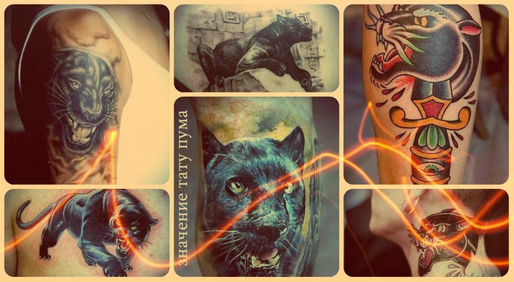 Значение тату пума - информация про смысл и фото примеры готовых татуировок