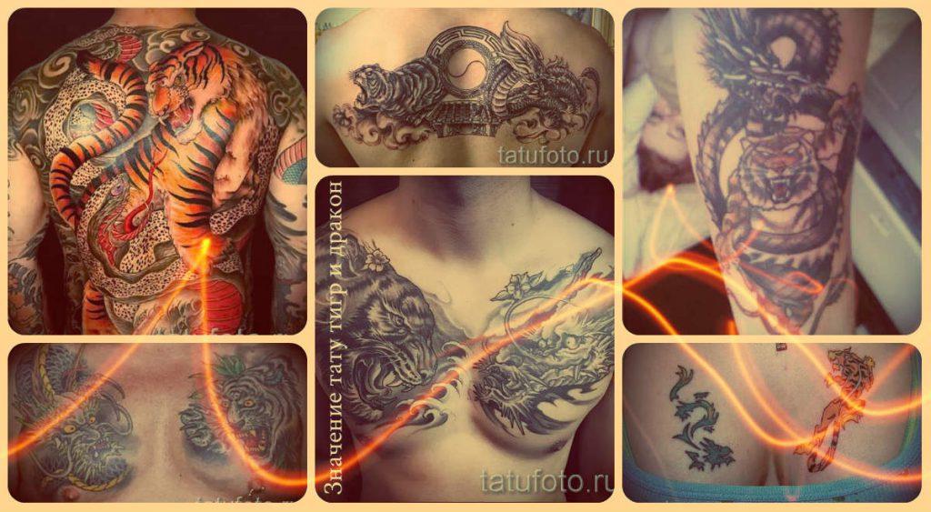 Значение тату тигр и дракон - информация по теме и фото удачных татуировок