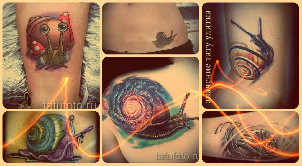 Значение тату улитка - интересная информация и примеры готовых тату на фото