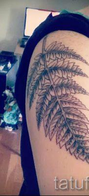 Классная тату папоротник на фото – для статьи про значение татуировки 2