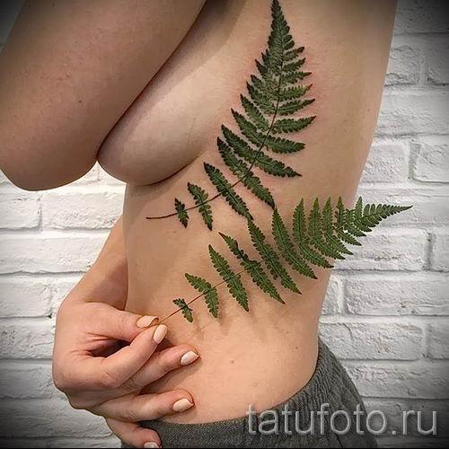 Классная тату папоротник на фото - для статьи про значение татуировки 3