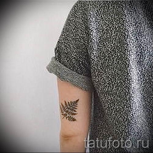 Классная тату папоротник на фото - для статьи про значение татуировки 5