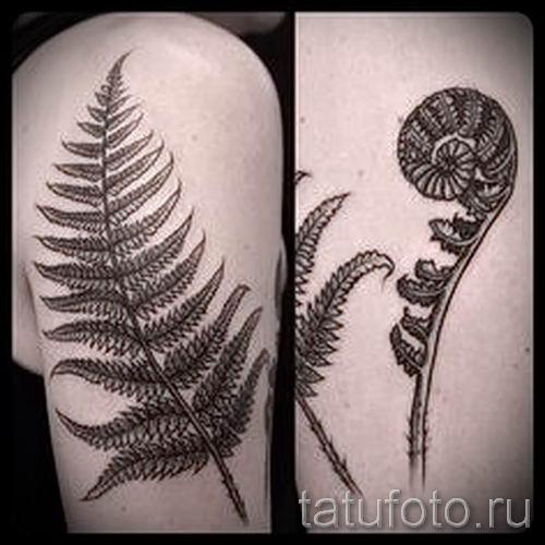 Классная тату папоротник на фото - для статьи про значение татуировки 9