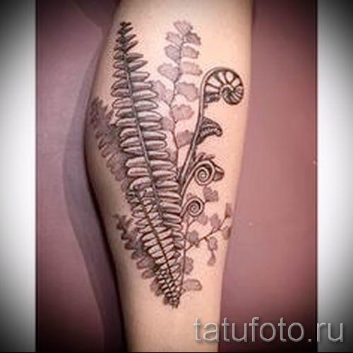Классная тату папоротник на фото - для статьи про значение татуировки 10