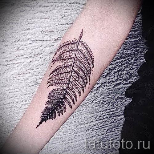 Классная тату папоротник на фото - для статьи про значение татуировки 17