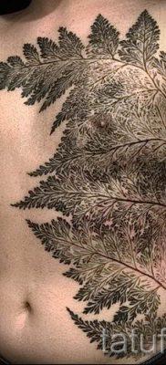 Классная тату папоротник на фото – для статьи про значение татуировки 26