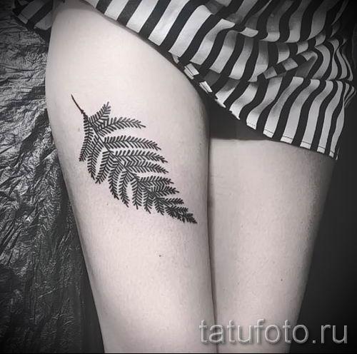 Классная тату папоротник на фото - для статьи про значение татуировки 28