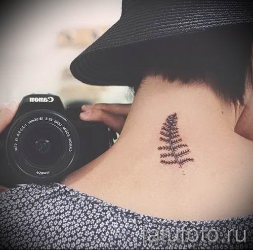 Классная тату папоротник на фото - для статьи про значение татуировки 29