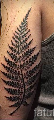 Классная тату папоротник на фото – для статьи про значение татуировки 33