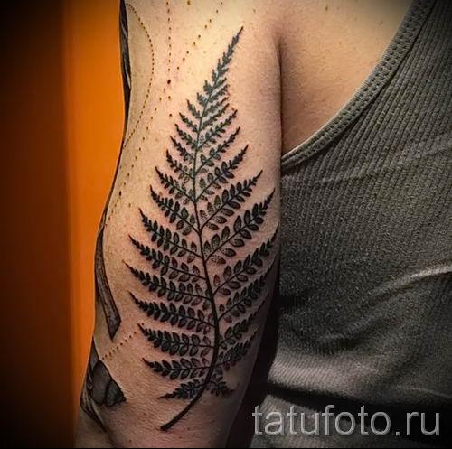 Классная тату папоротник на фото - для статьи про значение татуировки 33