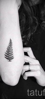 Классная тату папоротник на фото – для статьи про значение татуировки 35