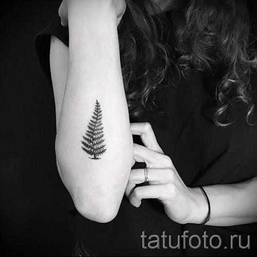 Классная тату папоротник на фото - для статьи про значение татуировки 35