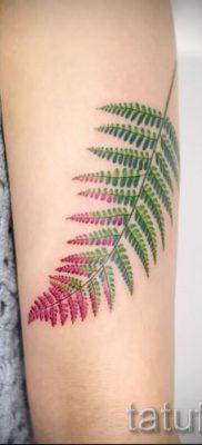 Классная тату папоротник на фото – для статьи про значение татуировки 36