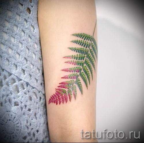 Классная тату папоротник на фото - для статьи про значение татуировки 36