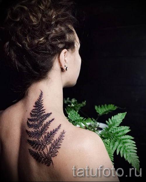 Классная тату папоротник на фото - для статьи про значение татуировки 39