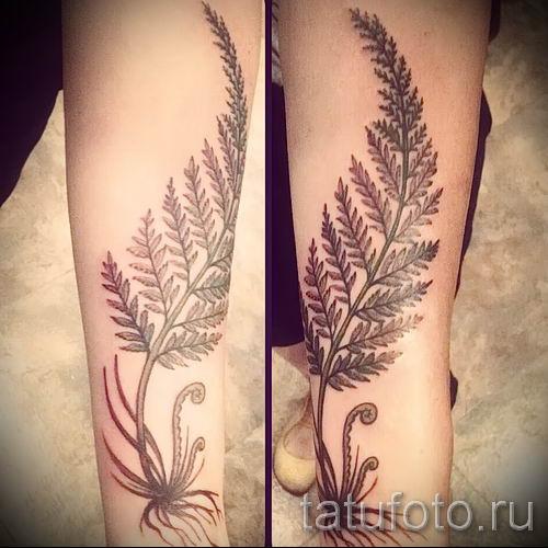 Классная тату папоротник на фото - для статьи про значение татуировки 46