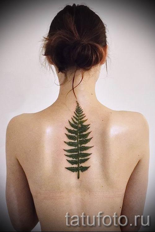 Классная тату папоротник на фото - для статьи про значение татуировки 53