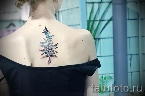 Классная тату папоротник на фото - для статьи про значение татуировки 55