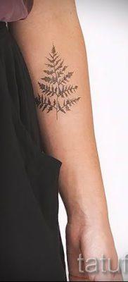 Классная тату папоротник на фото – для статьи про значение татуировки 56