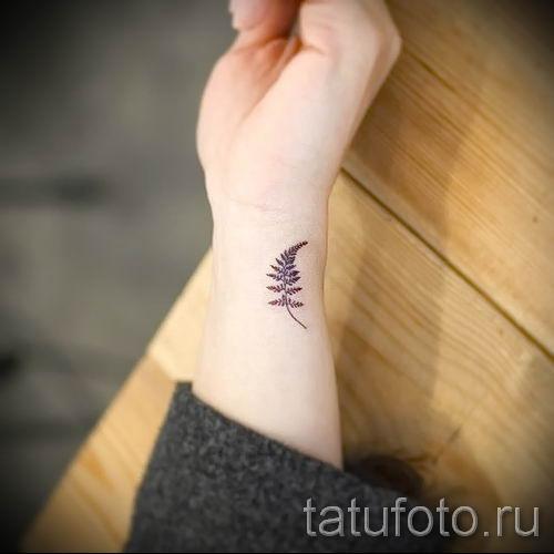 Классная тату папоротник на фото - для статьи про значение татуировки 57