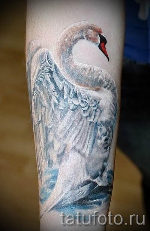 Пример татуировки с лебедем - фото для статьи про значение тату 24