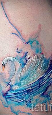 Пример татуировки с лебедем – фото для статьи про значение тату  38