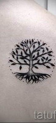 Тату дерево жизни фото для статьи про значение татуировки  1