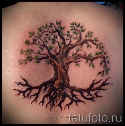 Тату дерево жизни фото для статьи про значение татуировки 2