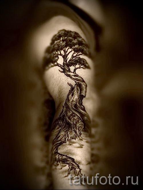 Тату дерево жизни фото для статьи про значение татуировки 11