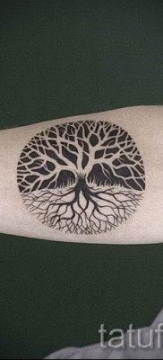 Тату дерево жизни фото для статьи про значение татуировки  15